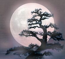 Moonlight on Bonsai Elm by Elizadearg