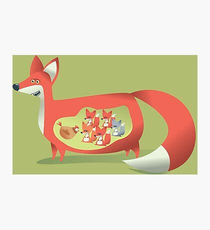 Fox Club Photographic Print