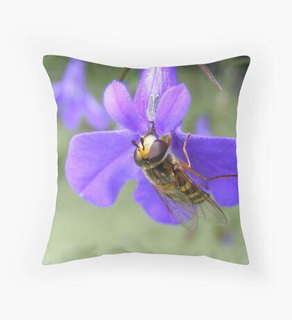 Love these lobelia flowers..... Throw Pillow