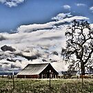 Central Valley Farm by NancyC