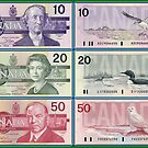 Birds On Banknotes by Robert Abraham