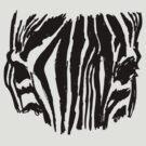 zebra by chknman
