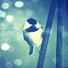 Sing, Sing, Sing by Kathleen Daley