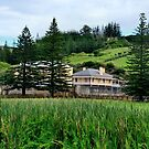 Norfolk Island  by Bev Woodman