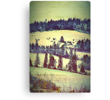 In Winter Days Gone By Canvas Print