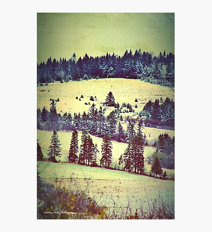 In Winter Days Gone By Photographic Print