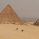 Cairo by pjm123