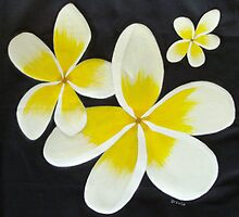 Yellow Frangipani's by Sooty6