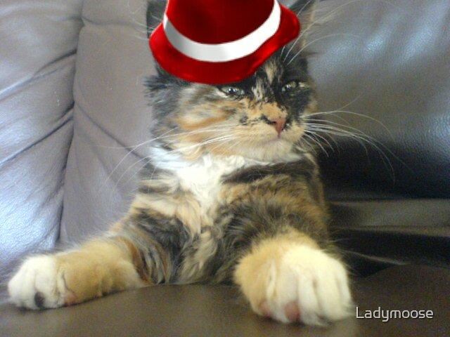 Sharp Dressed Cat by Ladymoose