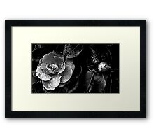 The darkness within Framed Print