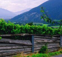 Valley of Vineyards Sticker