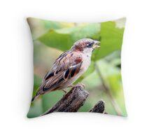 Tweet Tweet Throw Pillow