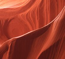 Antelope  Canyon by Steve  Taylor