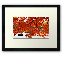Summer's End - Fall creeps in Framed Print