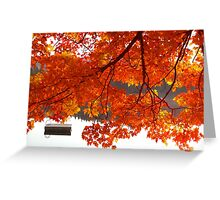 Summer's End - Fall creeps in Greeting Card
