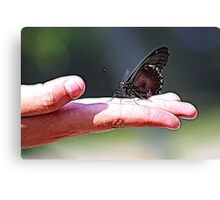 BUTTERFLY ON HAND Canvas Print