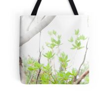 Springtime in the temperate forest Tote Bag