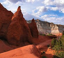 KODACHROME BASIN, UTAH by dgcheney