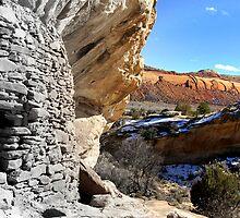Cedar Mesa Ruin by Rick Schafer