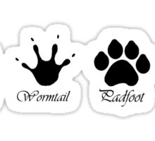 Moony, Wormtail, Padfoot and Prongs Sticker