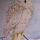 Snowy Owl's Perch by RLHall