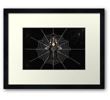 Said the spider to the Vampire Framed Print