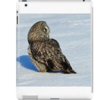 Great Grey Hunting Sequence 5 iPad Case/Skin