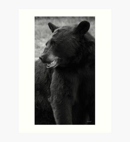 Bubba Bear Art Print