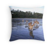 Seaside Wallabies Throw Pillow