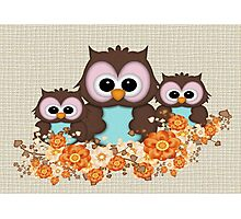 Owls June Photographic Print