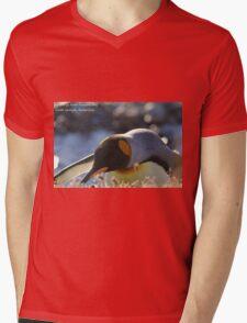 Fortuna Bay Postcard, South Georgia Mens V-Neck T-Shirt