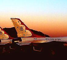 Air Force Thunderbirds by cshphotos