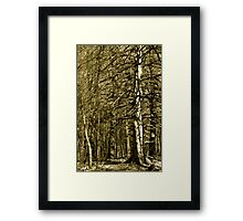 Even in Starkness There is Beauty Framed Print