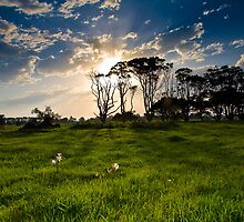 nowra sunset by marko1953