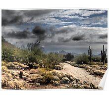 Desert December Skies in Phoenix Poster