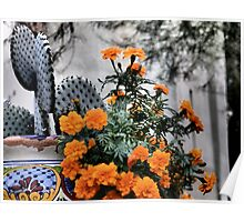 Old Town Flower Pot, Scottsdale Poster