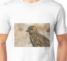 Tristan Thrush, Nightingale Island Unisex T-Shirt