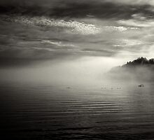 fog bank by Bill vander Sluys