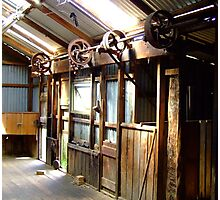 Inside the shearing shed Photographic Print