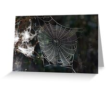 Spider's Web 2 Greeting Card