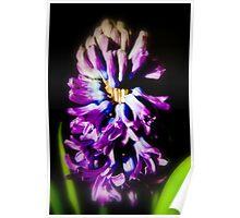 Flowering Bucket Poster