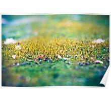 Moss in the Garden Poster