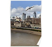 Seagull and the City Poster