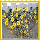 Daisy Thank You Card by judygal