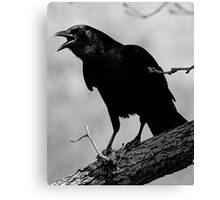 Calling All Crows Canvas Print