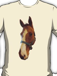 A Horse of Course T-Shirt