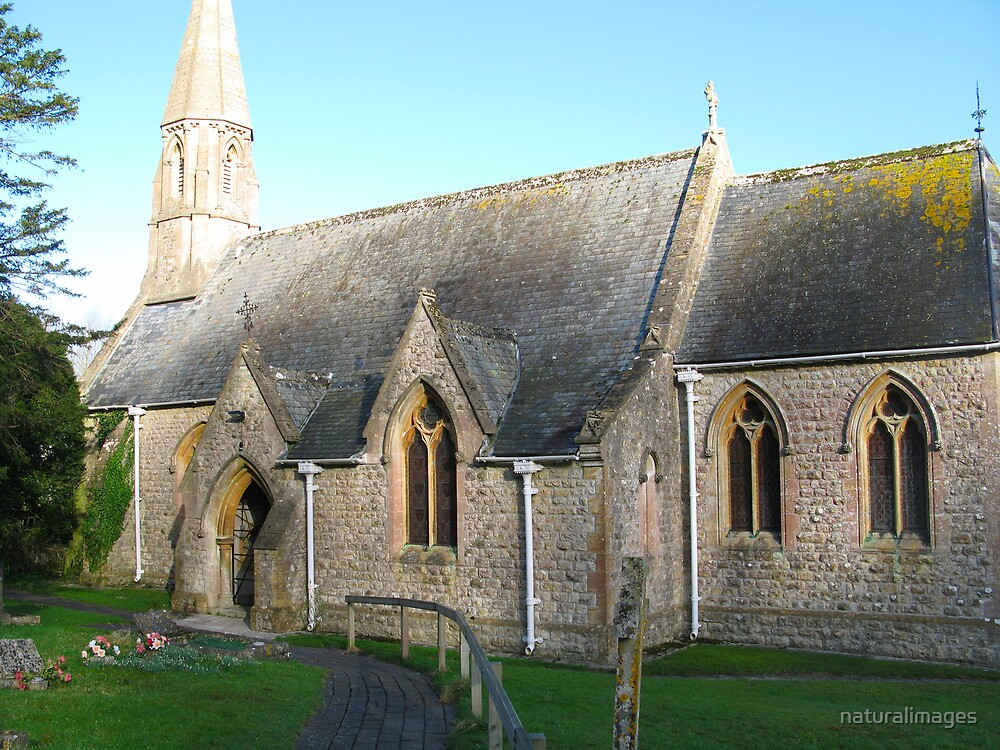Church at Woolland, Dorset by naturalimages