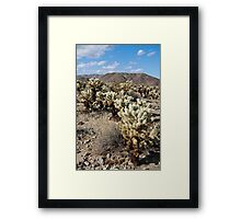 Jumping Cholla Cactus Field Framed Print