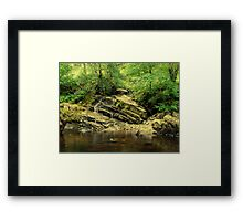 Green and  Brown Framed Print