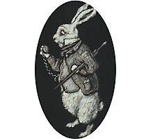 The White Rabbit Photographic Print